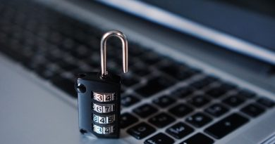 Why SAP Security matters